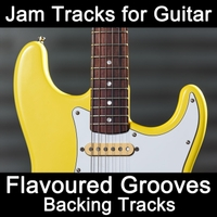 Flavoured Grooves backing track album